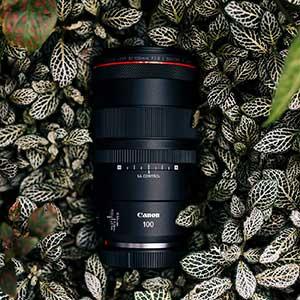 Canon RF 100 Makro 5