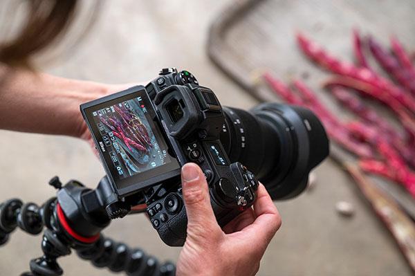Nikon Z Nikkor 105 im Einsatz Bild 2